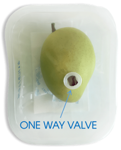 oneway valve